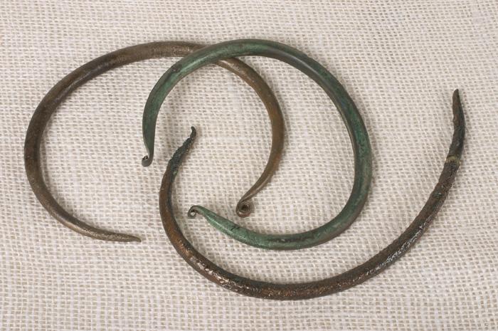 Výsledek obrázku pro hřivny železa